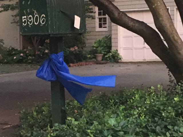 Joyce Way is studded with blue ribbons in support of the Dallas Police Department following the tragedy Thursday. (Photo by Emily Charrier)